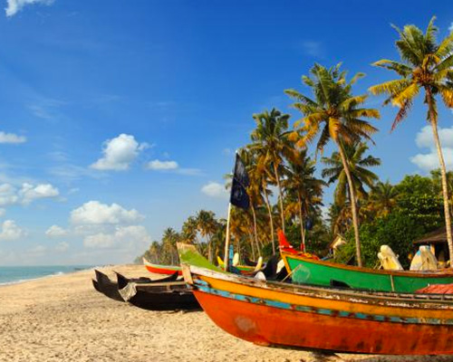 Explore Goa and Tamil Nadu Differently on Our Discovery Tour - Beyond the Taj, Discover Goa & Tamil Nadu