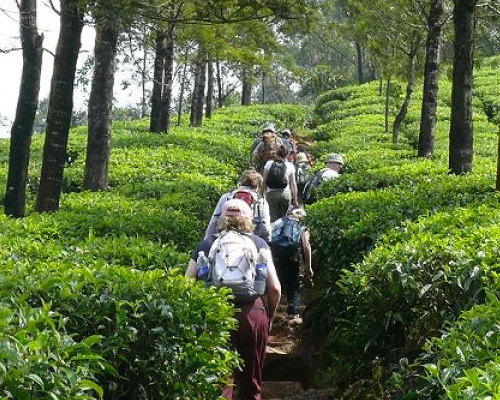 Kerala-2