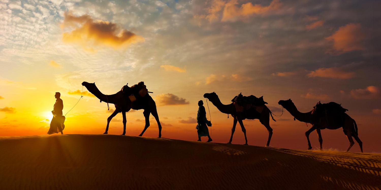 Pushkar and the Camel Fair - Beyond the Taj, Pushkar