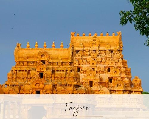 Goa and South India - Beyond the Taj, Goa & the South