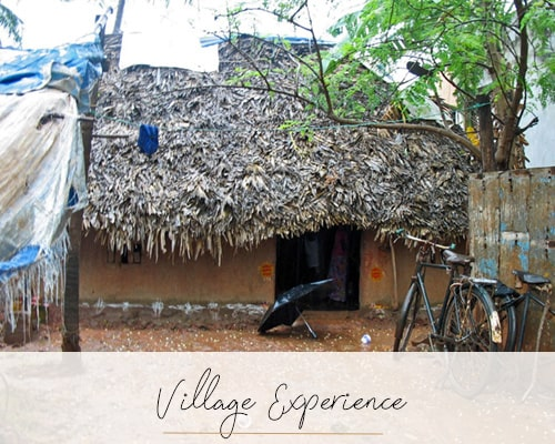 Village Experience