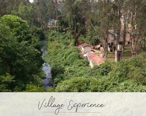 The Famous Hill Station of Ooty - Beyond the Taj, Ooty